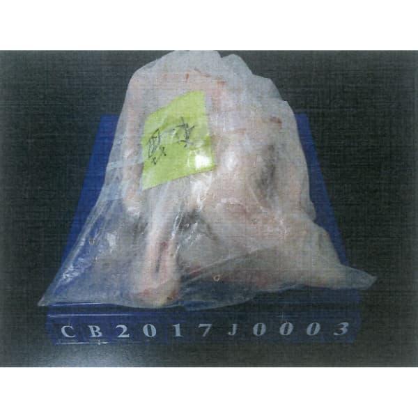 微量氣泡臭氧解凍機(建構中)
